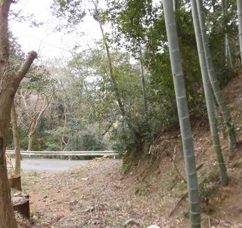 イノシシ被害で猟師がいた先週 4-5月中迄山入り禁止611x577.jpg