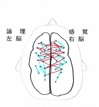 男女の脳図573x621.jpg