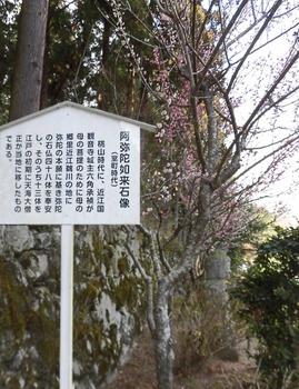 石像阿弥陀仏坂本515x669.jpg
